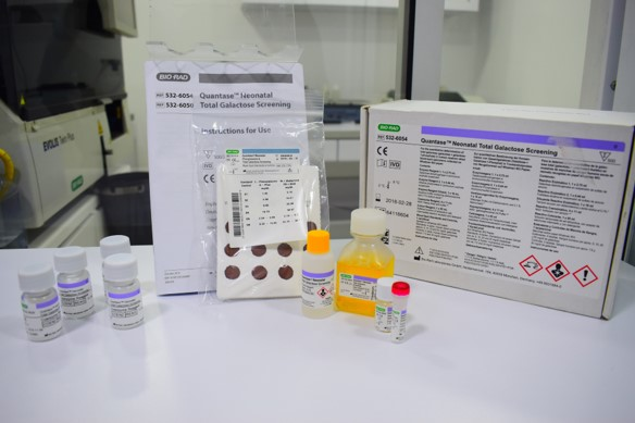 Tamizaje neonatal quantase galactose screening kit